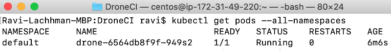 screenshot run log command kubectl get pods --all-namespaces